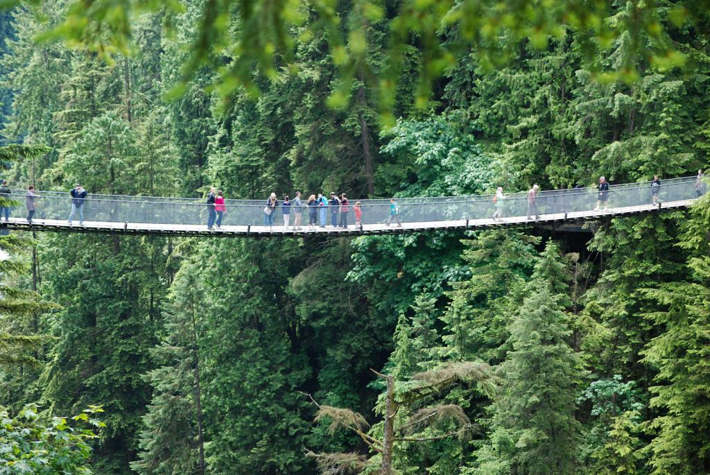 Capilano Bridge, most zavěšený asi 50m nad zemí